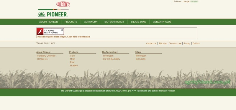 Pioneer Pakistan agrinfobank.com.pk