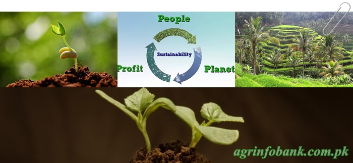 What is sustainable agriculture? agriculture information bank
