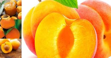 Salient Features of Apricot Cultivation