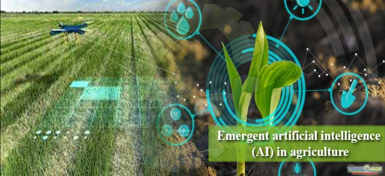 Artificial Intelligence: The future of Pakistan's agriculture