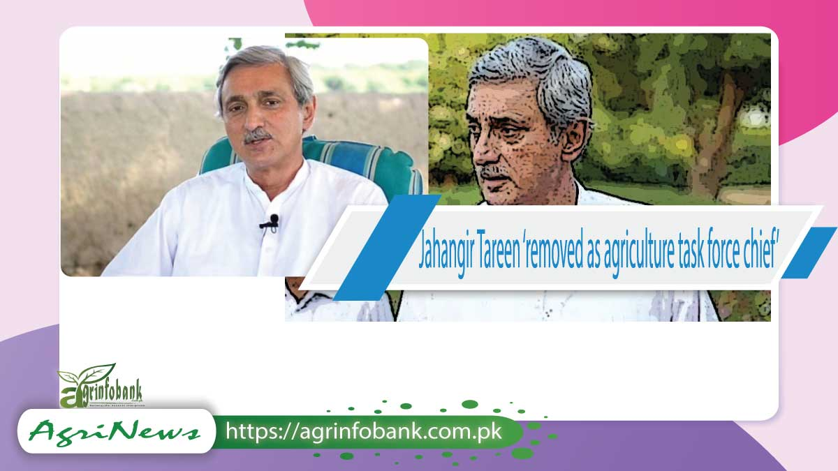 Jahangir Tareen 'removed as agriculture task force chief'