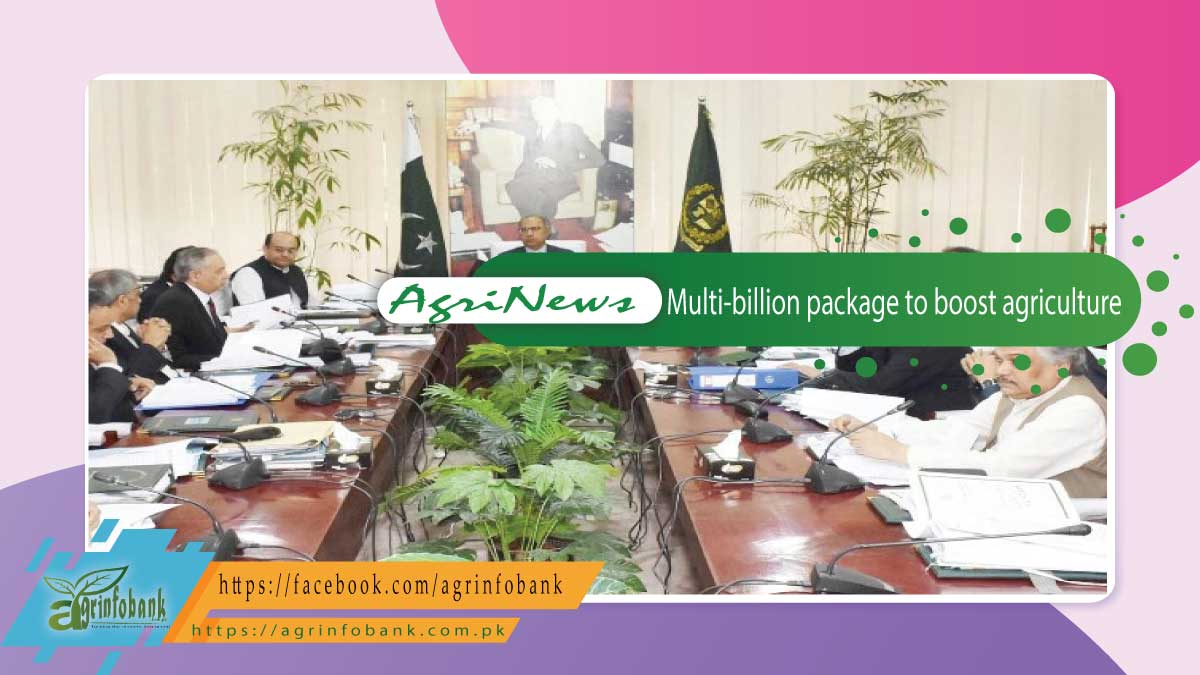 ECC approves multi-billion package to boost agriculture, support farmers