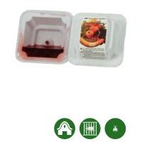2 x BIOLOCK® Fruchtfliegenfalle - Anzahl: 6 Stück