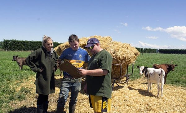three farmers reading