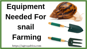 Equipment Needed For snail Farming
