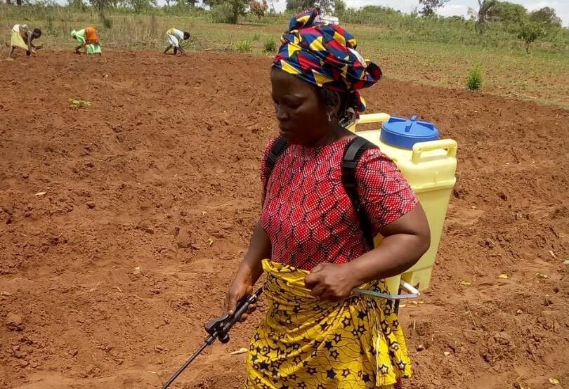 Black-woman-spraying-preemergence-herbicides