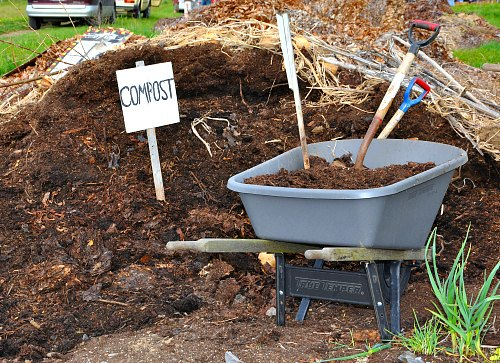 Compost for cucumber farm