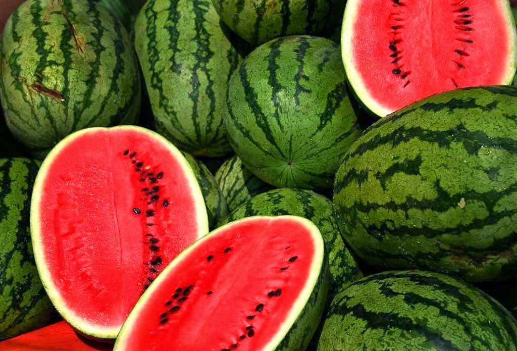 harvested-watermelons-ready-for-consumption