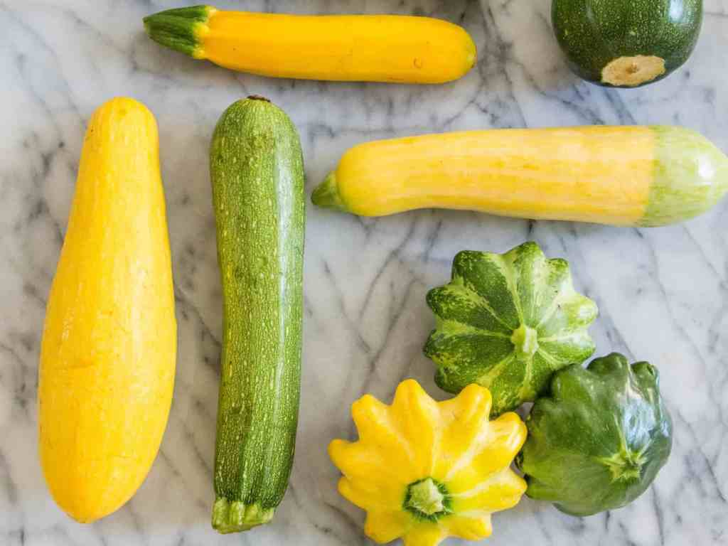 types-of-summer-squash-the-farming-guide