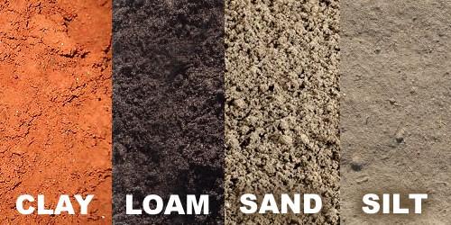 Loam-soil-is-the-best-soil-for-snail-farming