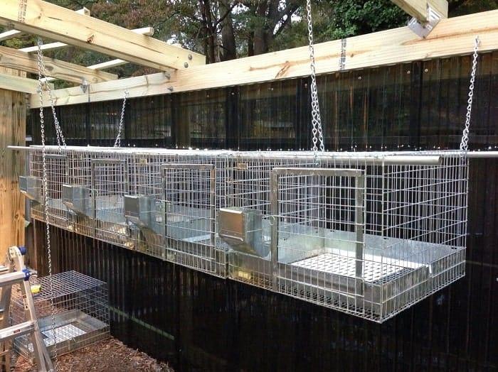hanging-outdoor-rabbit-housing