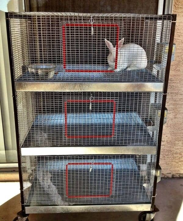 rabbit-housing-system-stacked-hutch-boxes