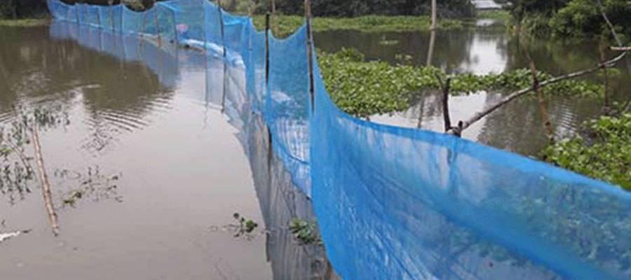 Pond Management of flooded area