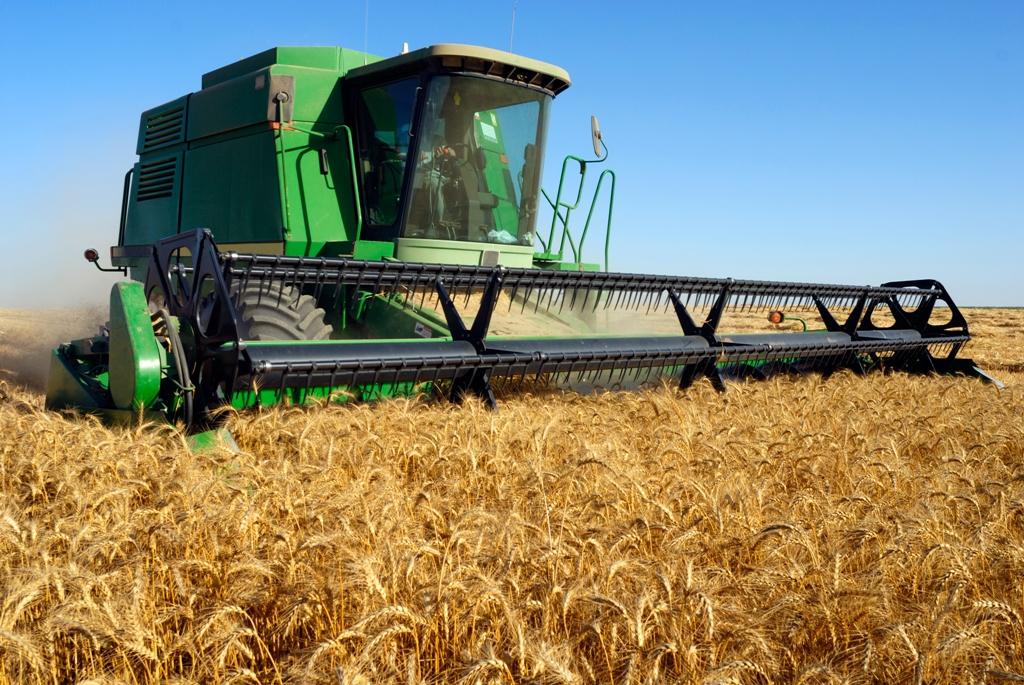 Sector agroalimentario queda como servicio esencial en el real decreto