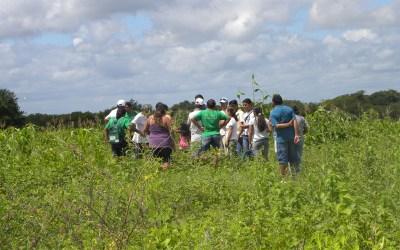 FAO reconhece agroecologia