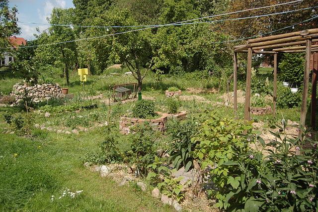 En un sistema de Permacultura debe funcionar los principios agroecológicos