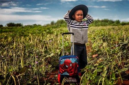 Agricultura regenerativa, conceptos y prácticas