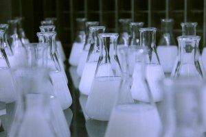 Biofertilizantes: sustancias que incrementan la disponibilidad de nutrientes a las plantas