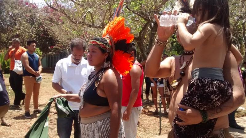 a indigena 4