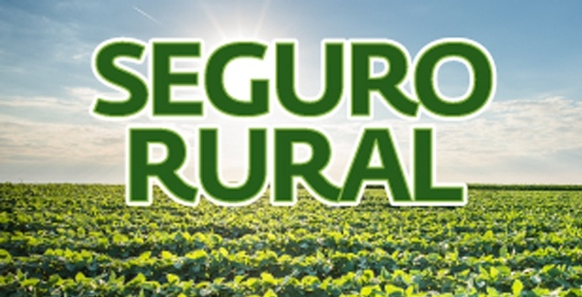 aaaa c_ seguro rural