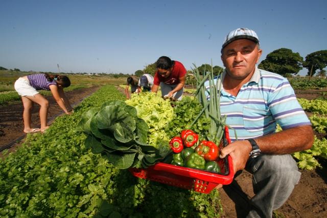 agricultura familiar mda
