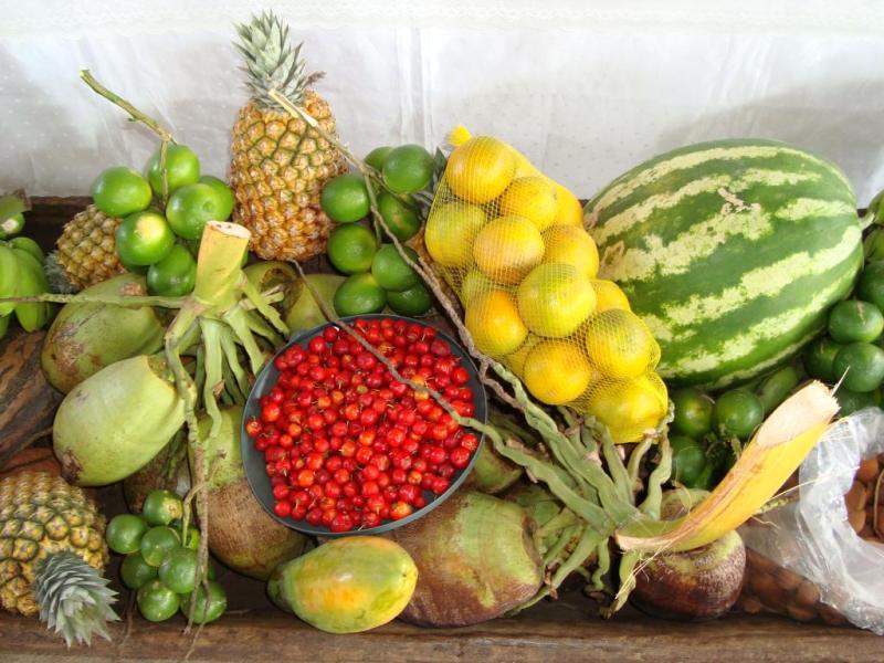 alimentos agricultura familiar