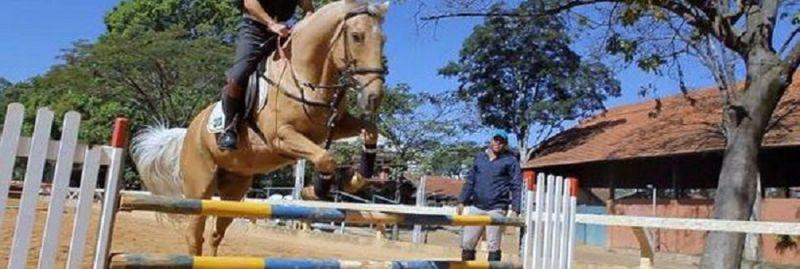 a - cavalo ebc