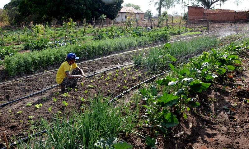 agroecologia to 1