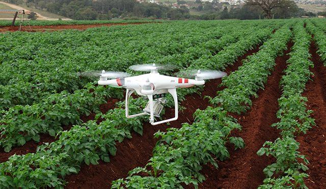 drone embrapa