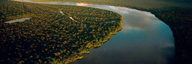 amazonia ebc 25