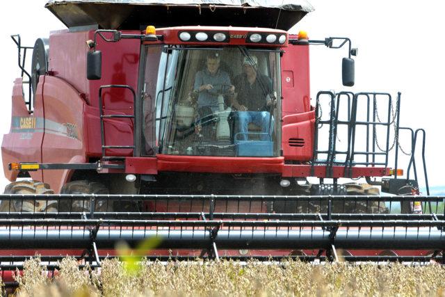 Temporada de colheita de grãos 2017/2018 está aberta