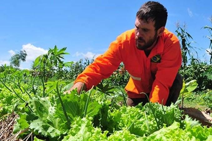 agricultor familiar agencia brasilia tony