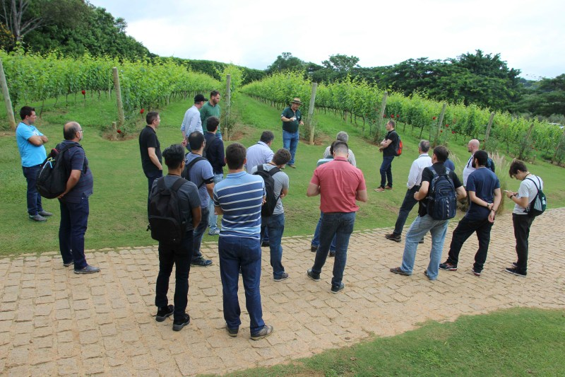 irrigacao precisao vinhedos 3