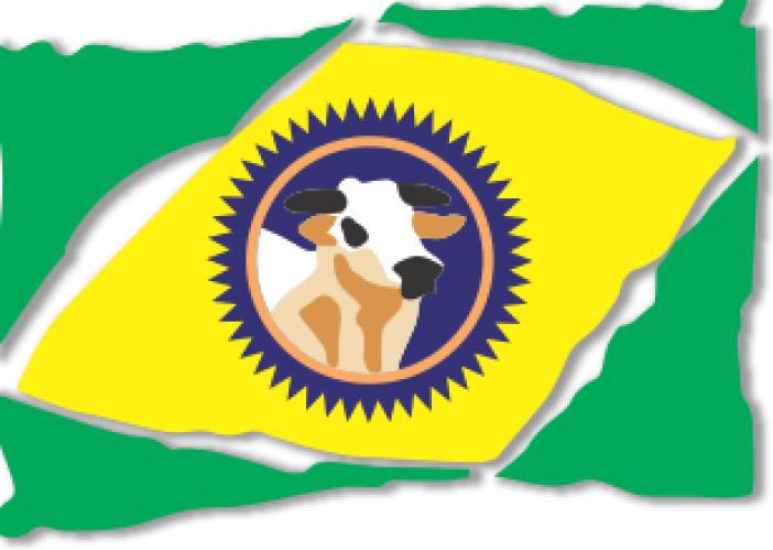 logo3 abrafrigo