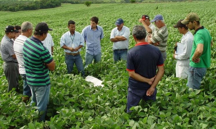 Emater reúne produtores e técnicos e mostra aplicação de boas práticas agrícolas