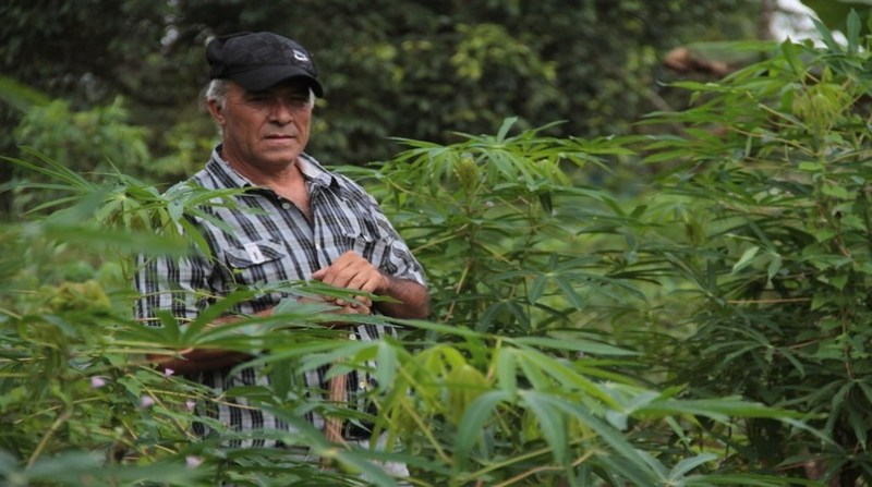 agricultor idoso governo ro