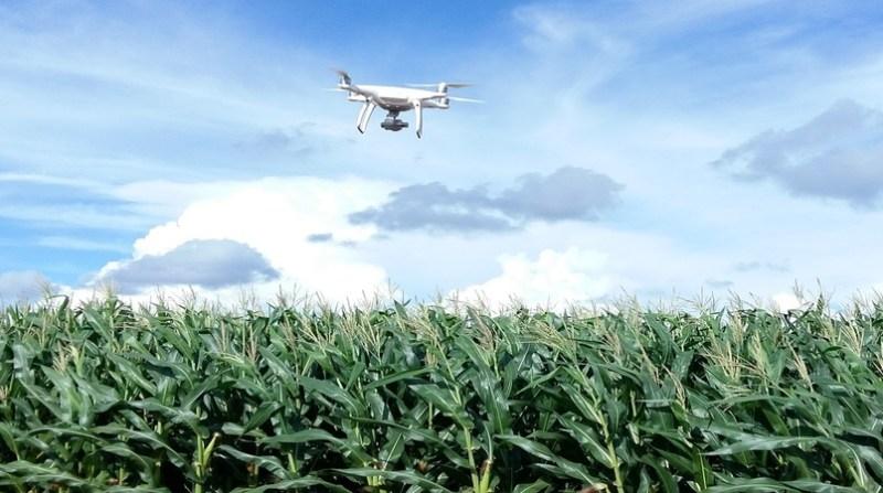drones joana silva embrapa