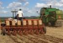 Remuneração no agro cresce mais que a da média brasileira, aponta Cepea
