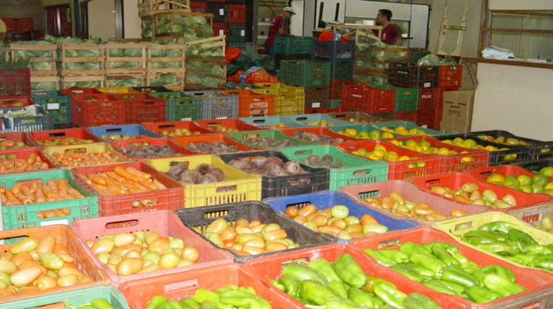 frutas verduras ceasa maringa pr