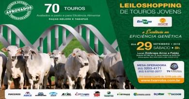 Embrapa e AGCZ promovem LeiloShopping de touros jovens em GO