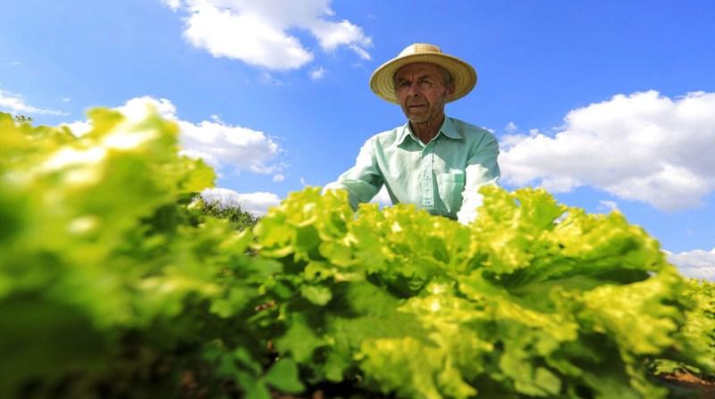 agriculturafamiliar- Arnaldo AlvesANP Fotos Públicas