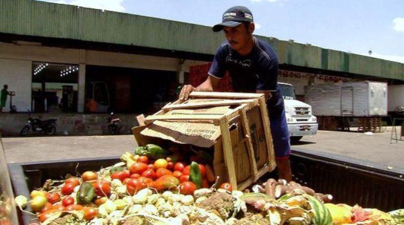 desperdicio alimentos tb brasil
