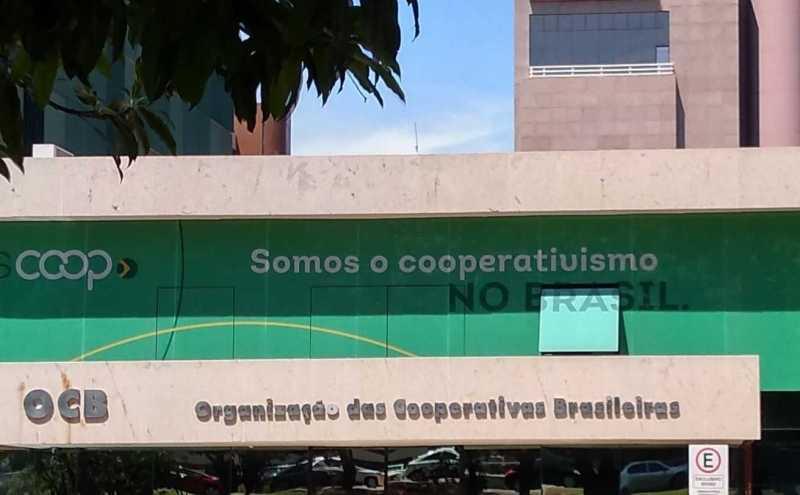 ocb 2.jpg a