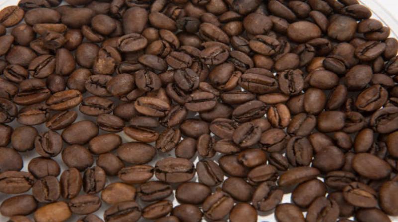 cafe tomas may