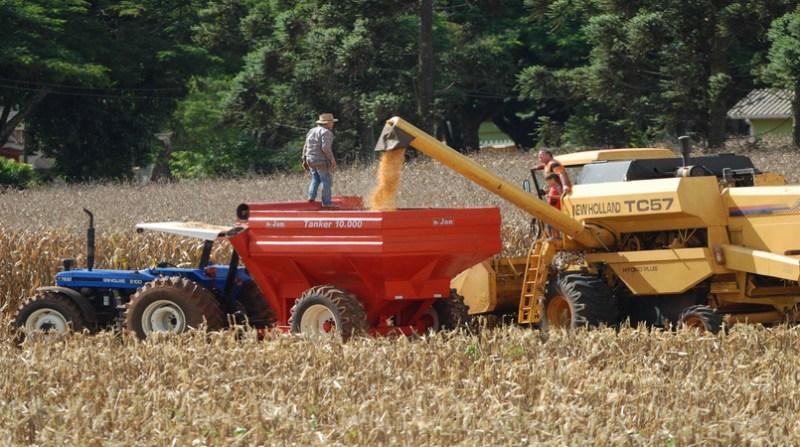 maquina colheita milho