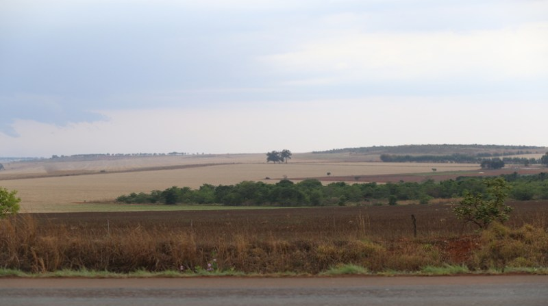 area agricola df