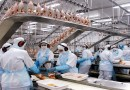 Frango: Diminuição de negócios pressiona valores da carne