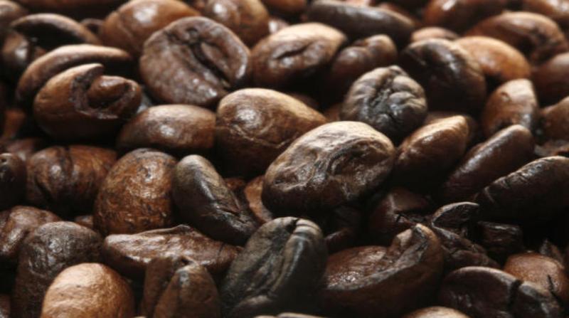 cafe 27 3 19