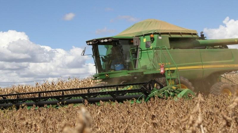 maquina colheitadeira campo elio rizzo 12 2 19