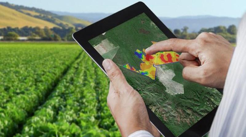 tablet produtor campo